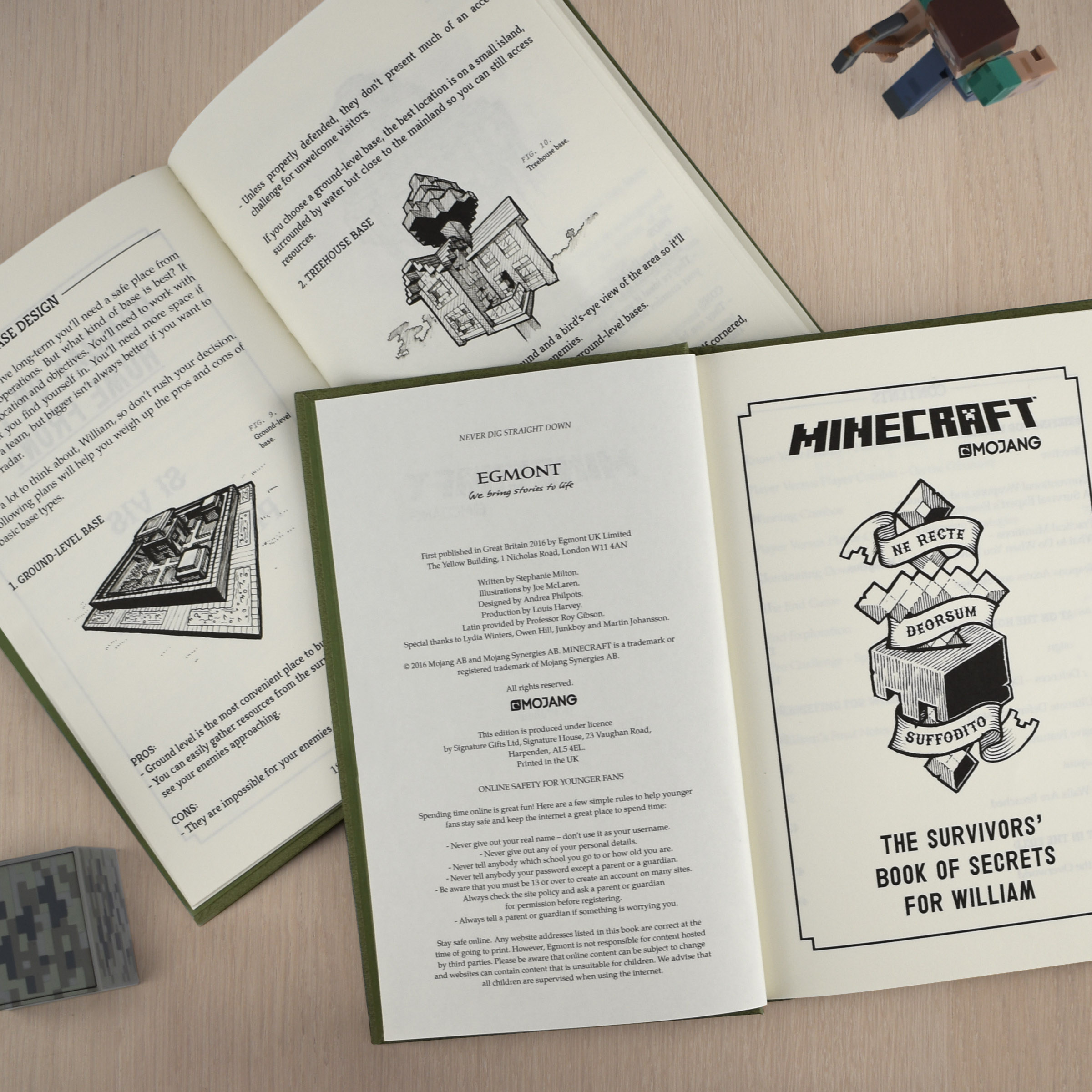 Minecraft: The Survivor's Personalised Book of Secrets